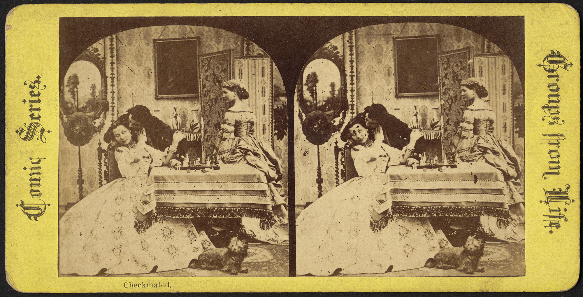 chess, checkmated, stereograph, boston public library, sepia