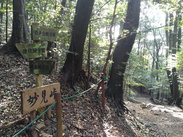 金華山 東坂登山道 妙見峠
