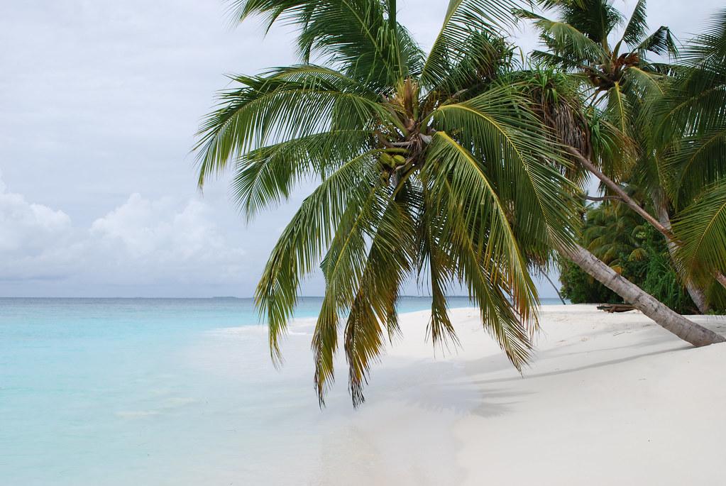 Coco Palm Beach Resort Entrance Fee