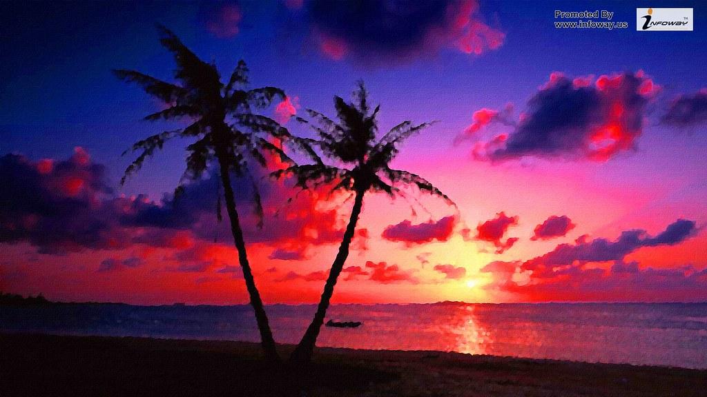 Pink Beach Sunset Wallpaper: Download Pink Beach Sunset Wallpaper