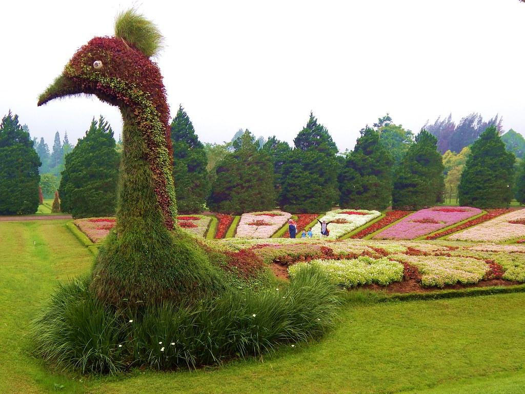 Taman Bunga Nusantara Taken At Taman Bunga Nusantara Cipa Flickr
