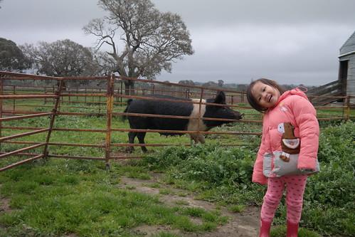 Farmstay at Mount Emu