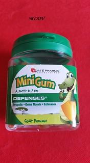 mini gum forte pharma défenses enfants