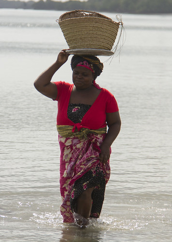 Fisher woman collecting small fish and shrimp in Bagamoyo, Tanzania. Photo by Samuel Stacey, 2013.