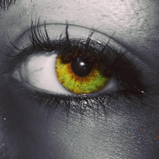 #greeneyes | Domenico Presutto | Flickr