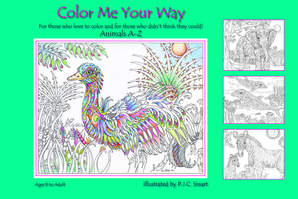 Scribbles Drawing And Coloring Book : Color me your way by pamela smart scribble artist