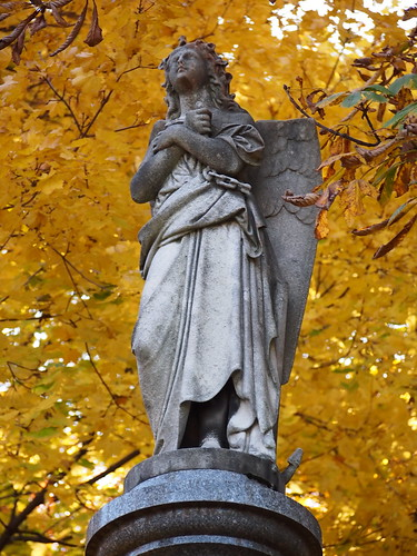 angel statuary in mount pleasant cemetery toronto against golden maple leaves
