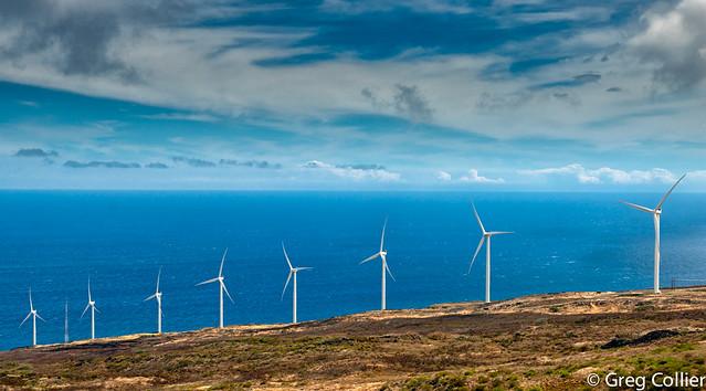 Maui wind farm.jpg