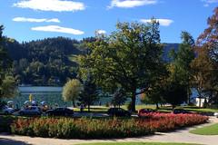 Lake Bled IMG_0701