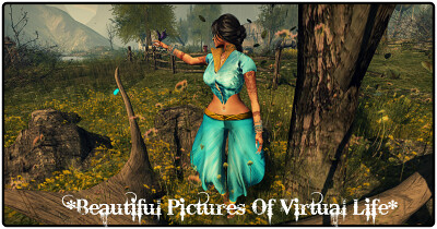 Beautiful Pictures Of Virtual Life