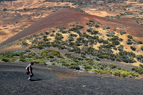 Volcano surfing in Teide National Park