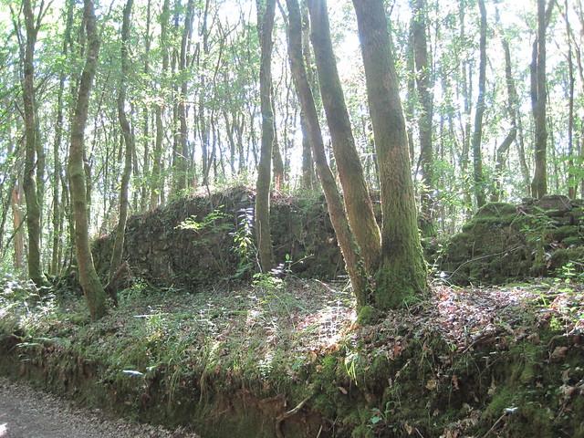 Ruinas en el PR-G 93 Ruta da Ribeira do Ulla