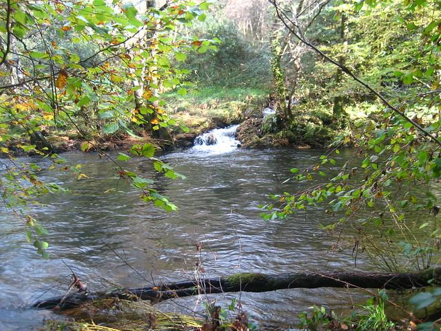 Afluente del río Mandeo