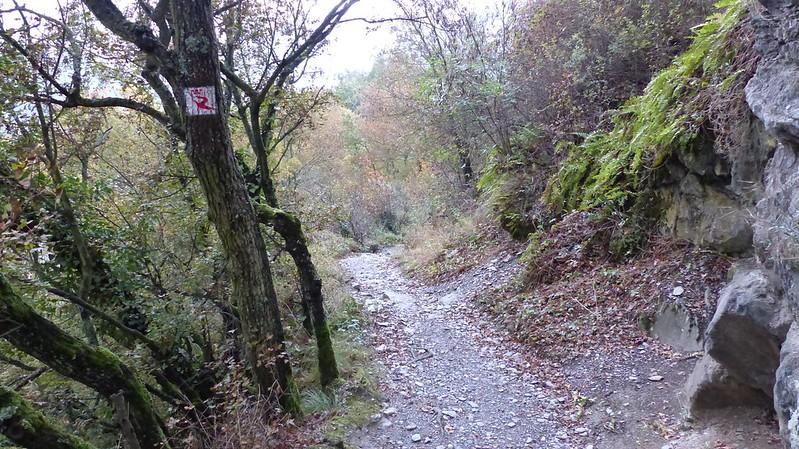 Felsenweg nach Oberwesel