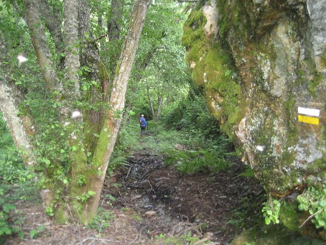 Sendero en el PR-G 144 Ruta Natural dos Castros e Nivieira