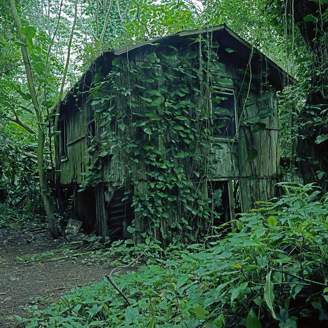 Haunted House Abandoned Oahu