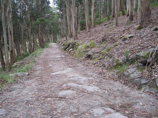 Camino en la ruta de senderismo en las islas Cíes