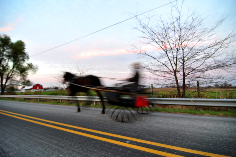 Amish Speed