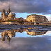 Notre-Dame / Puddle reflection