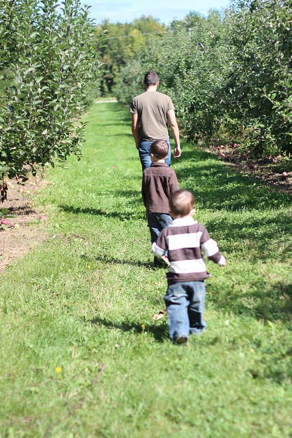 applepicking 001