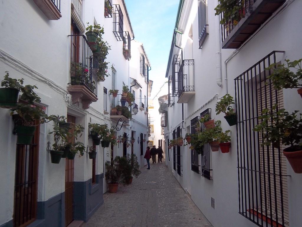 The beautiful ana de armas - 5 8