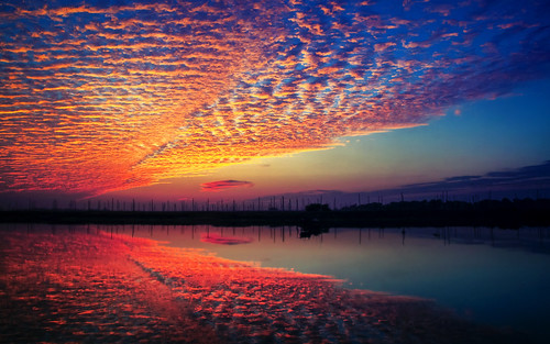 Cirrocumulus After Sunrise   Flickr - Photo Sharing!