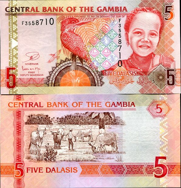 5 Dalasis Gambia 2013
