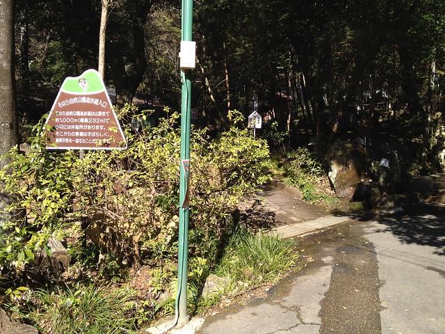 そはら自然公園遊歩道入口