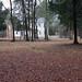 North Carolina, Durham County, Stagville State Historic Site, Stagville Plantation- Bennehan House (Rear)