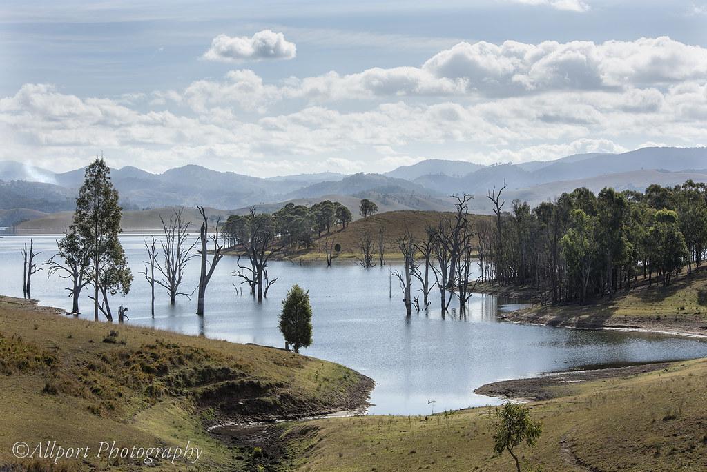 Værvarsel Singleton NSW