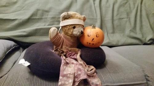Kuma Likes Pumpkins
