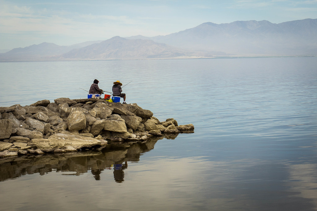 Fishing for talapia in salton sea california one of the for Salton sea fishing report