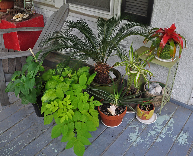 Front Porch Collection