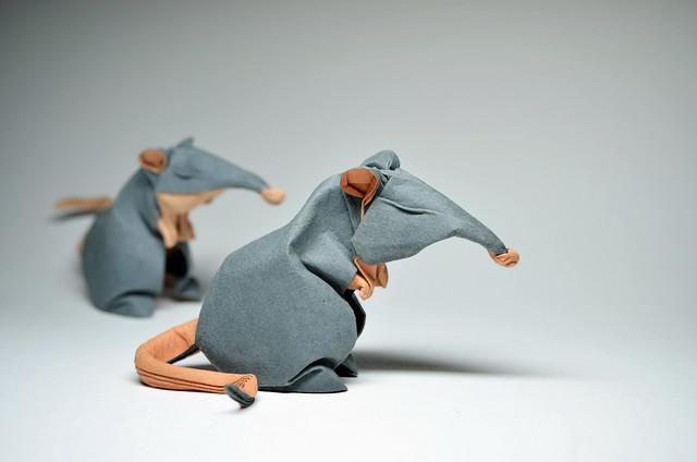Origami Rats