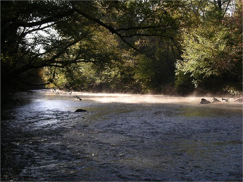 Uwharrie_river by Amy Kober, American Rivers. | by USFWS/Southeast