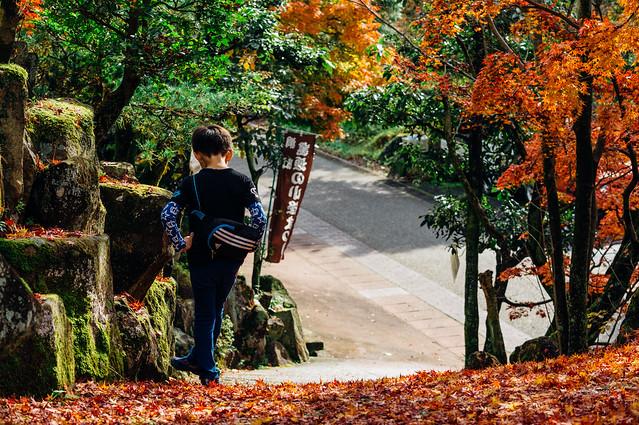 Seto_Kamagaki_17