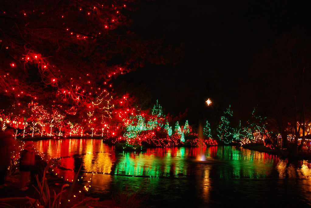 Van Deusen Gardens Christmas Lights 10