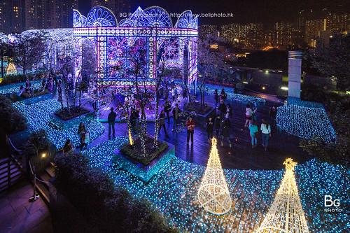 The Christmas Light Show