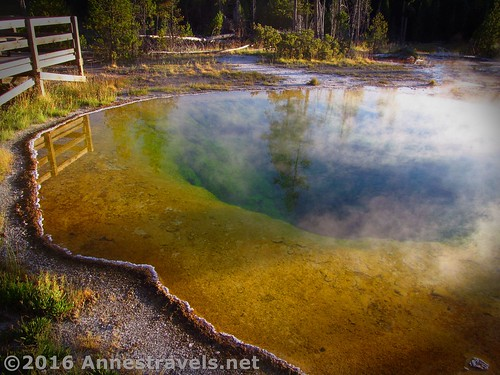 Morning Glory Pool in the Upper Geyser Basin of Yellowstone National Park, Wyoming
