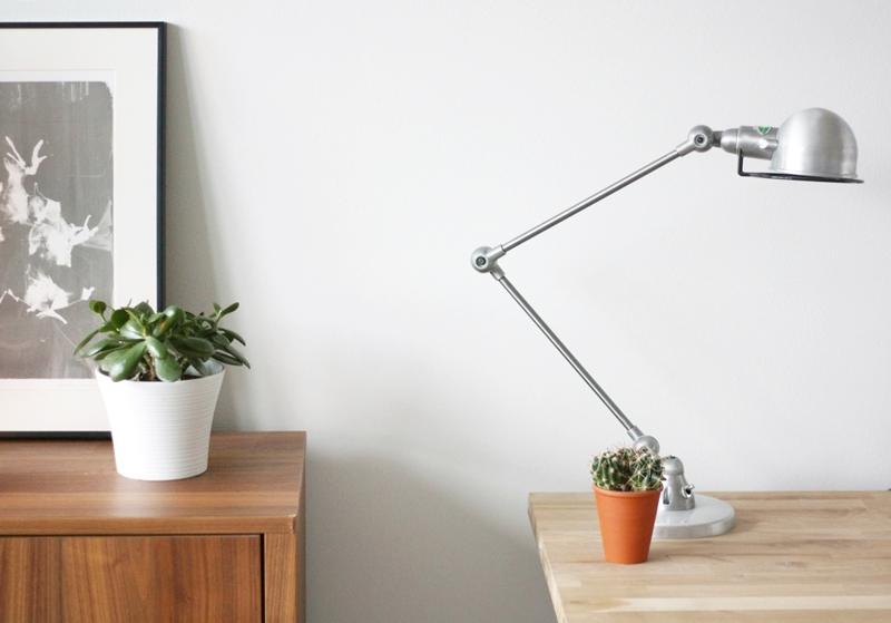 Paunikko + kaktus 1
