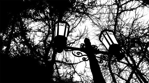 Street-Lamps-black-and-white