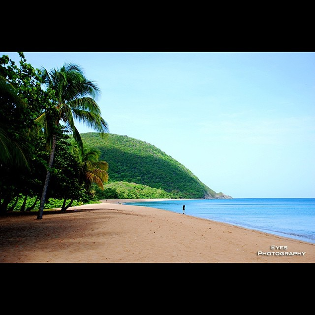 Guadeloupe Beach: #landscape #guadeloupe #deshaies #beach #sand #beautiful