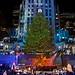 The 2012 Rockefeller Center Christmas Tree Lighting