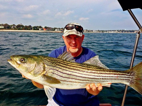 Steve Webster Bass Captain Steve Webster And The