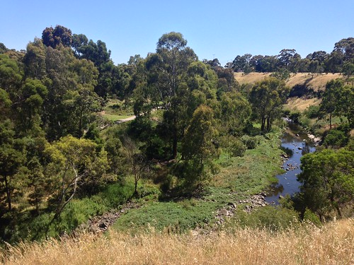 Merri Creek, Clifton Hill