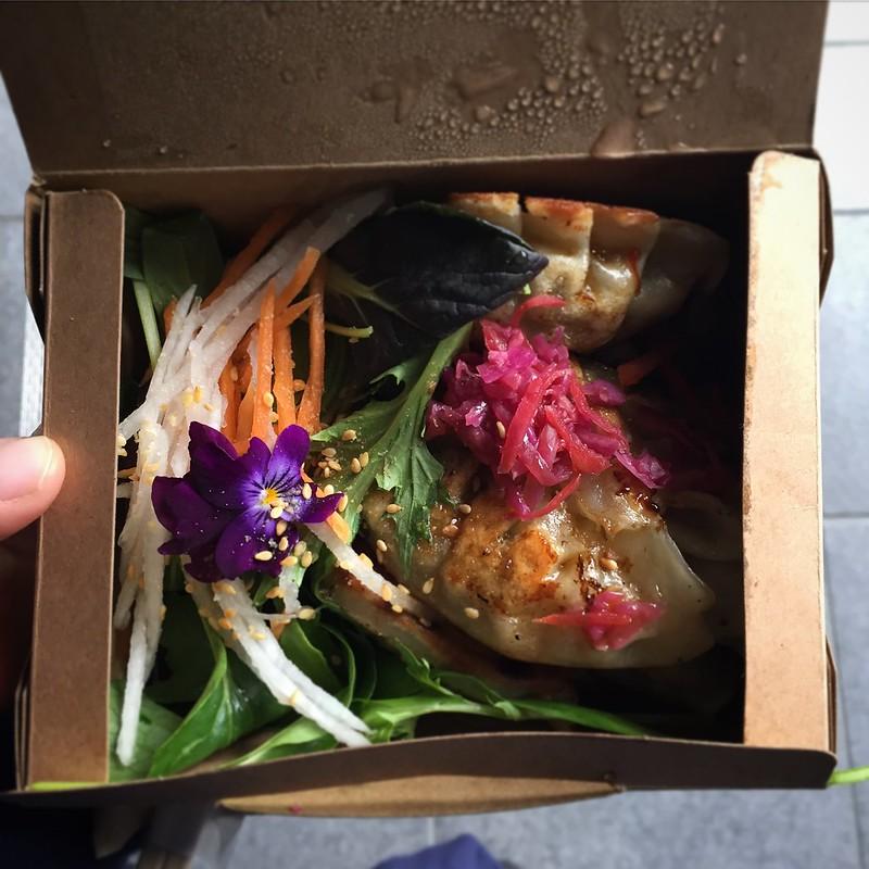 Box of Mandu dumplings