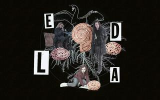 Project Leda