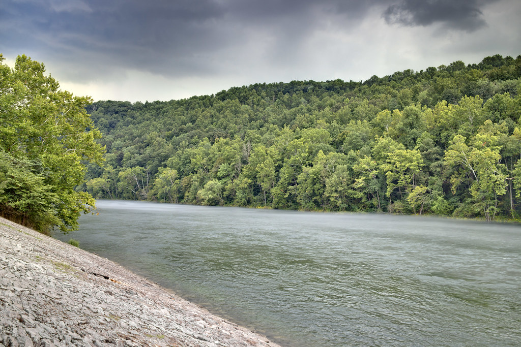Clinch river norris lake state park anderson county ten for Norris lake fishing report