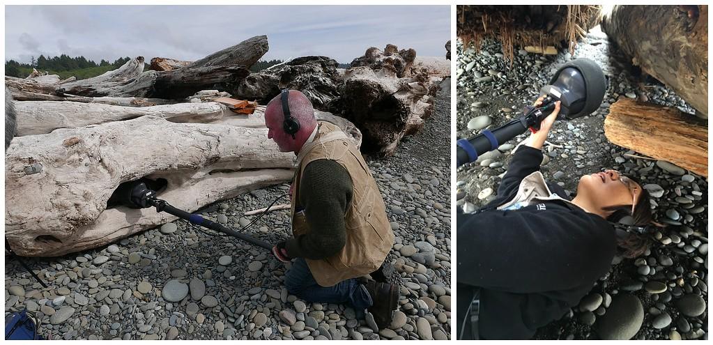(左)戈登以夢幻等級錄音設備傾聽海濱木之耳。(右)范欽慧換一種角度聆聽。圖片來源: 范欽慧。