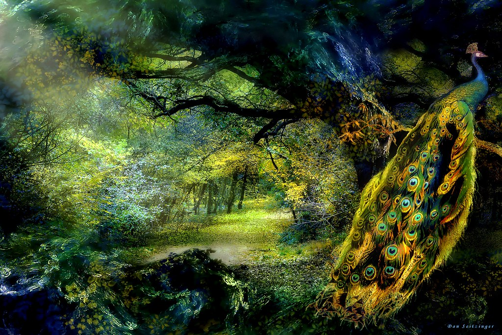 Real Fairytale Landscapes Peacock Forest Fantasy...